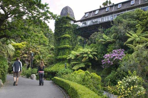 The Wellington Botanic Garden1
