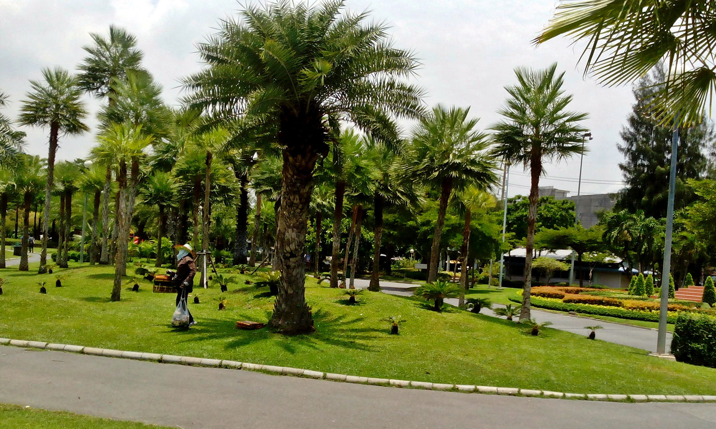 Chatuchak-Park-clean